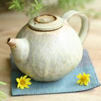 Tanbayaki Pottery Teapot 240ml, Pure Hand-made Teapot by Nobuhito Nakaoka, Ceramic Kyusu