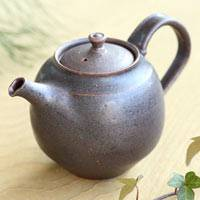 Can Directly Simmer Tea Teapot 230ml, Japanese Kyusu, Chinese Tea Chahu, Made by Shinobu Hashimoto