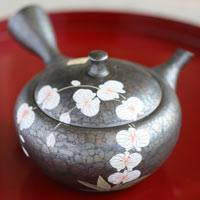 Orchid Pattern Flat Type 350ml Pure Hand-made Tokonameyaki Teapot by Shoryu, Sencha Kyusu