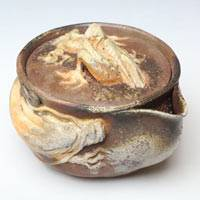 Double White Dragon Houhin150ml, Pure Hand-made by Teruhiko Omori, Japanese Bizenyaki Pottery Gaiwan