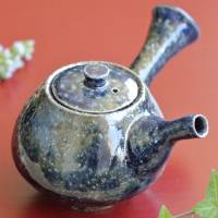 Takeshi Shimizu, Salt-glazing Wood-fired Teapot 230ml, Japanese Green Tea Teaware, Sencha Kyusu